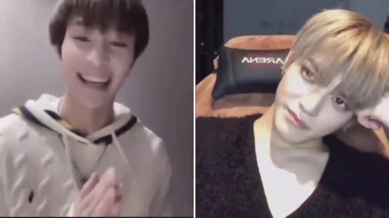 Taeyong reaction to Yangyang schnappi cover