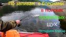 Рыбалка на хищную рыбу, щука, окунь, вращающиеся блесна, колебалки, джиги, живем в таежной избе.