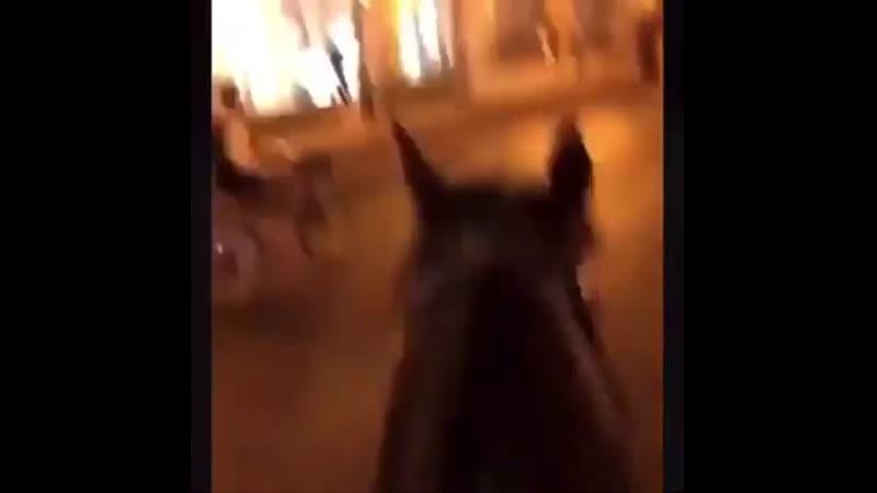 В Чикаго протестующий украл лошадь у конной полиции