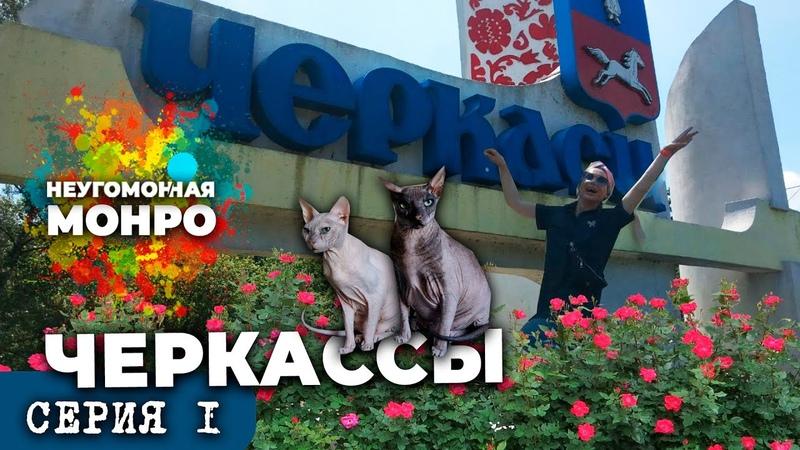 краЇноЮ з МОНРО ЧЕРКАССЫ 1 дорога из Киева Любограй дамба лысые коты и Анна Курникова