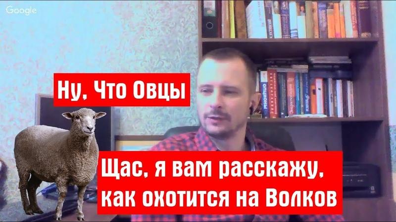 Отзыв на Е.Халепа или как Пудель, учил Овец охоте на Волков. (показательная порка)