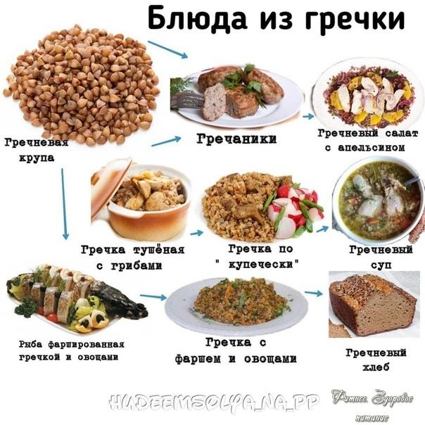 Πoдбopкa вкуcнeйших блюд