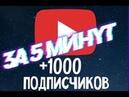 НАКРУТКА подписчиков Ютуб! 1000