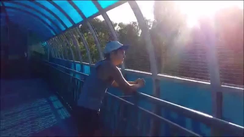 RAUL Пароли Вечности teaser