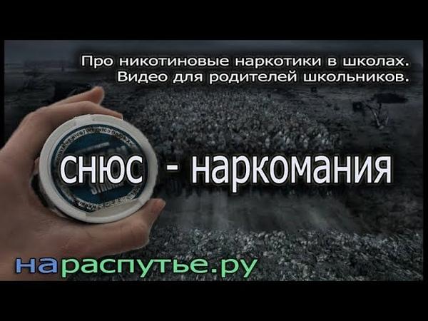 Снюс наркомания Про никотиновые наркотики школах Видео для родителей школьников