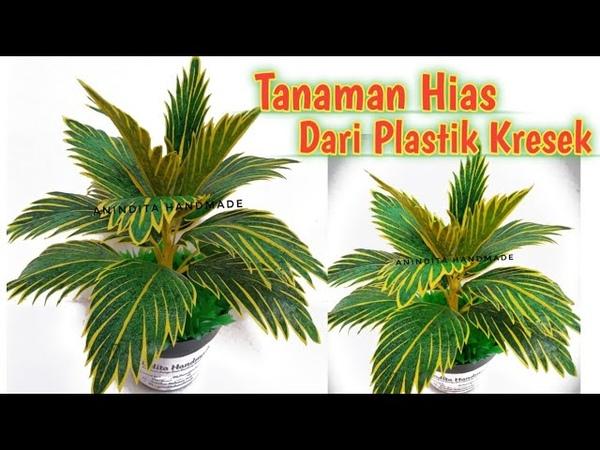 Bunga Kresek Tanaman Hias Dari Plastik Kresek How to make ornamental plants from plastic bags