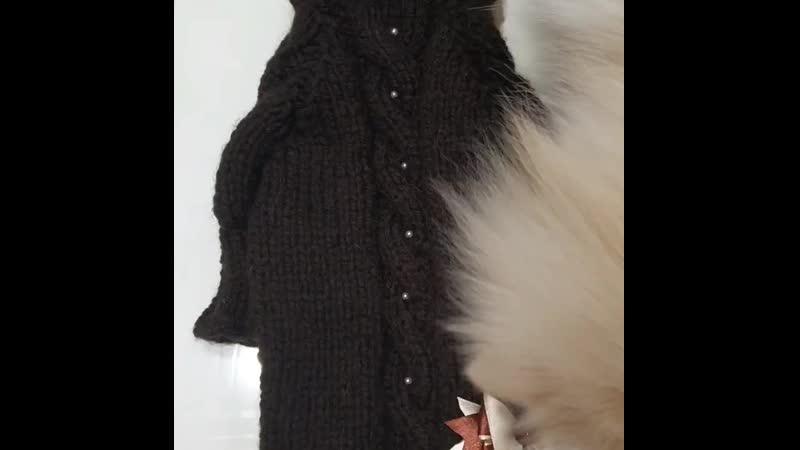 Вязанный джемпер для собачки