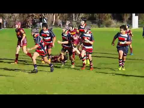 Playing Kids Rugby with Southern Lions under 10s Vs West Scarborough