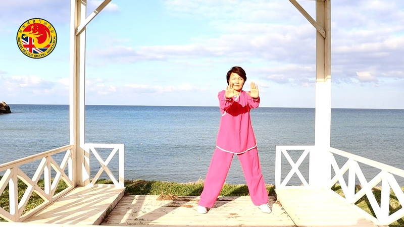 Master Faye Health Qigong Daoyin Yang Sheng Gong 12 Fa