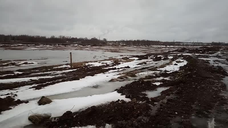 Добыча грунта в Дачном на бывших совхозных полях январь 2020