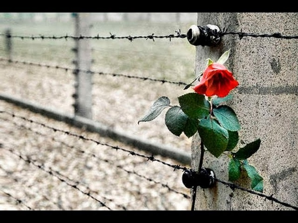 Shoah - Do not forget
