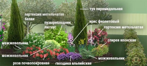 Вариант цветника - Клумба, отделяющая зону отдыха от огорода.