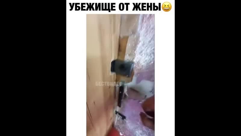 Vine video (720p)-5.mp4
