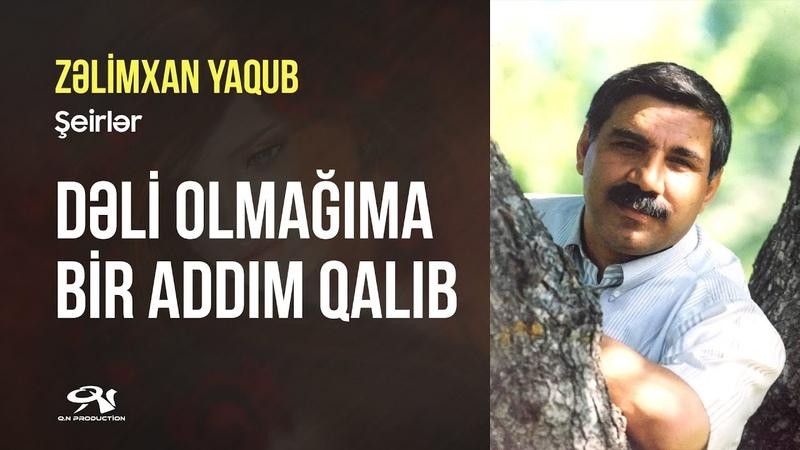 Zelimxan Yaqub DELI OLMAGIMA BIR ADDIM QALIB oz sesi ile seirler