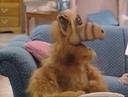 Alf я же голый