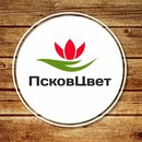 Фотоальбом Екатерины Τетериной