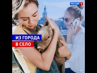 В России жители мегаполисов всё чаще стали уезжать жить в деревню  Россия 1