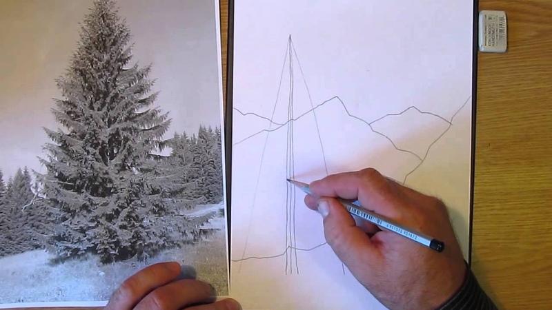 Как рисовать ёлку в горах. Часть 1. Урок 13