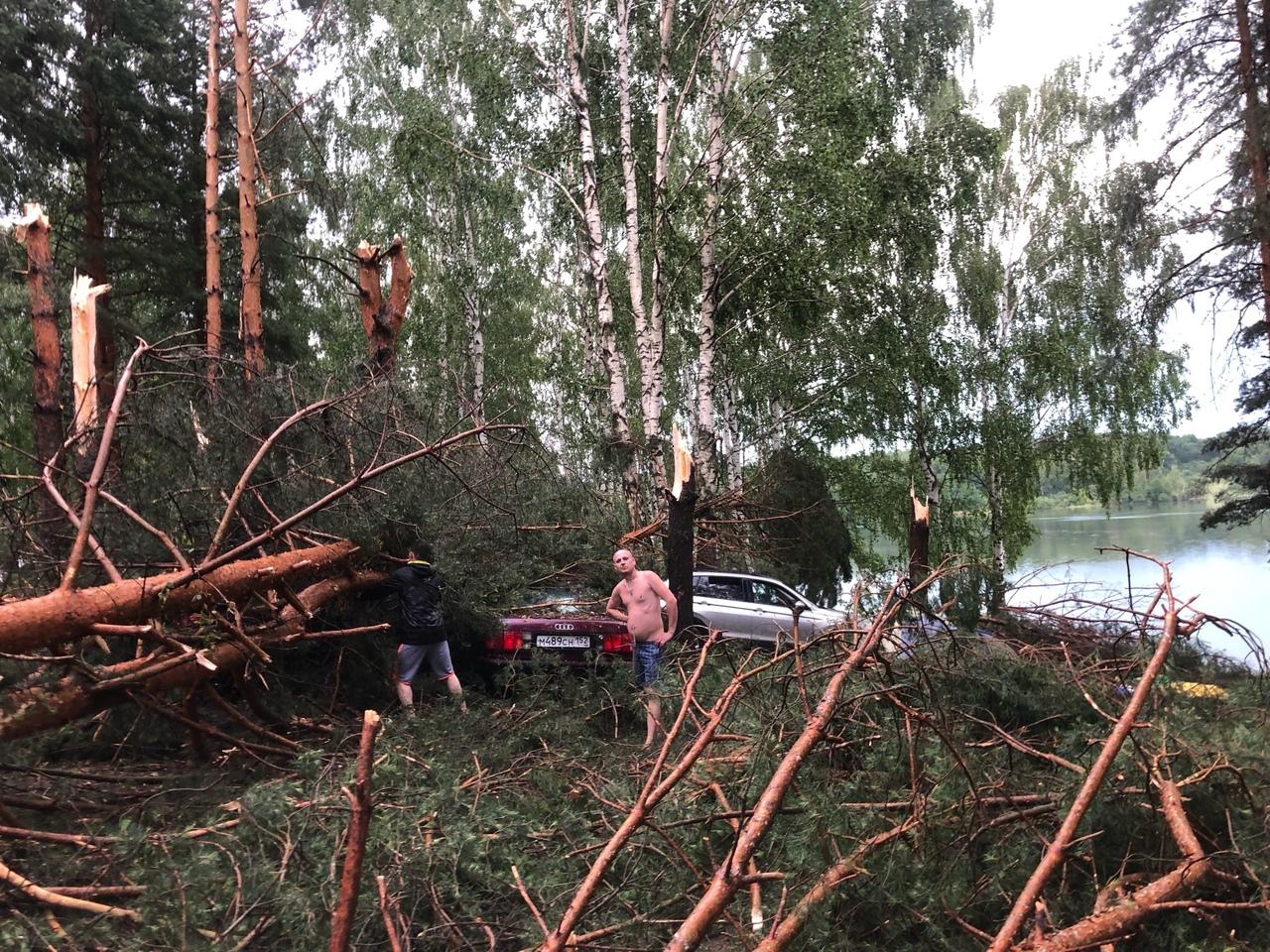 буря повалила деревья на машины в Богородском районе 27 июня