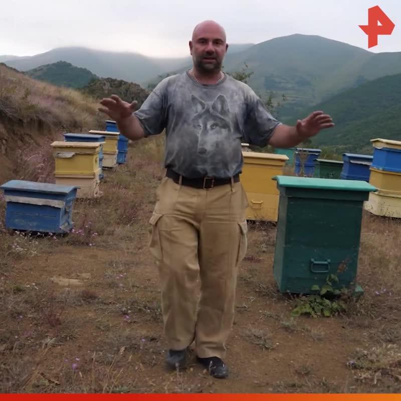 Тимофей Баженов о том, как добывают горный мёд / #РЕНТВ