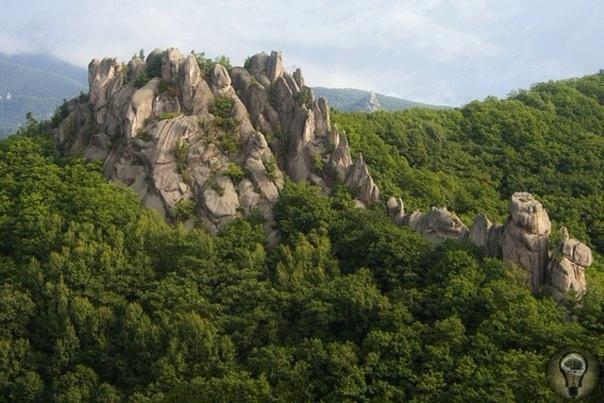 Чудеса природы или следы древних цивилизаций. Природа в Приморье большая выдумщица, официально этот комплекс считается природным образованием. Хотя, как обычно, есть и сторонники инопланетного