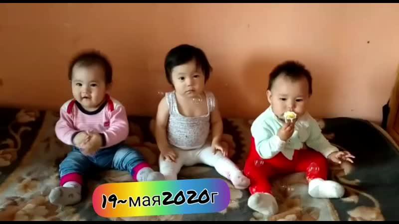 3 кыз