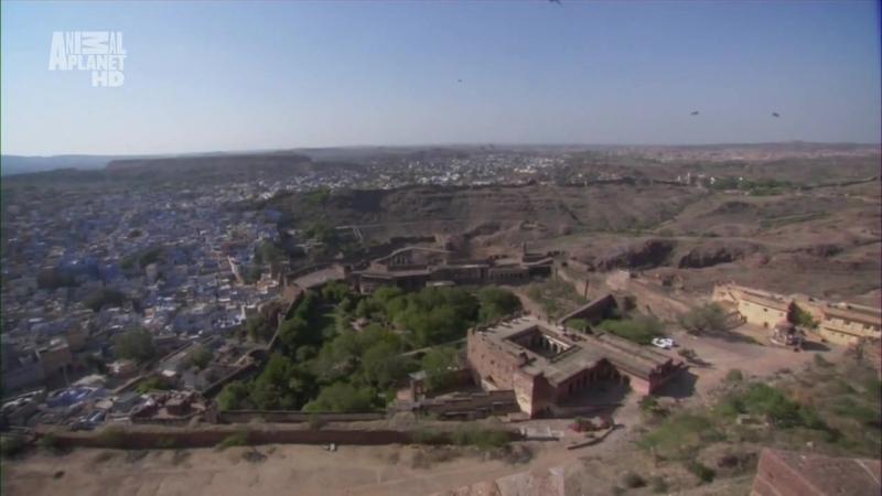В дебрях Индии Фильм 1 Пустыня Тар Священные пески 2011г