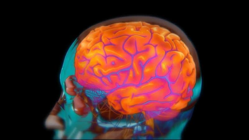 ᴴᴰ Тело человека Грани возможного 4 Человеческий мозг Brainpower 2008 США научно познавательный 1080p