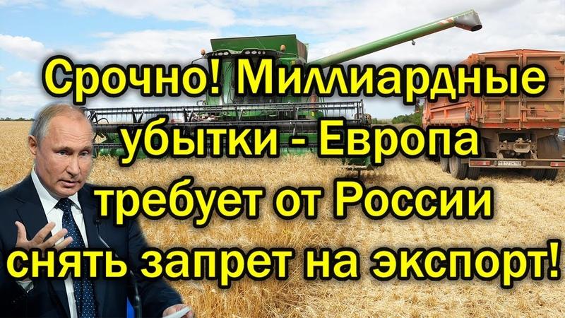 Миллиардные убытки Европа шокирована последствиями санкций России