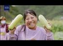 Значимые фрагменты 1-ой серии фильма Ликвидация бедности