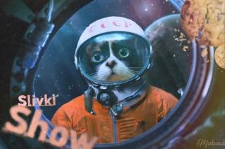 Куки и космос