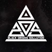Логотип Black Origins Sollution