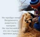 Фотоальбом Игоря Семенова
