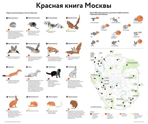 Редкие млекопитающие Москвы и ареалы их обитания...