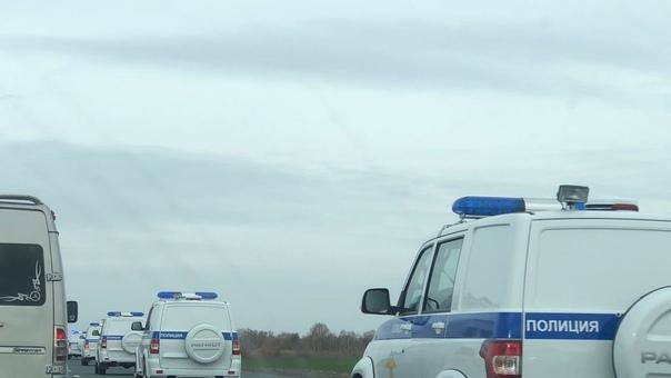 В Самарской области на трассе М5 очевидцы заметили...