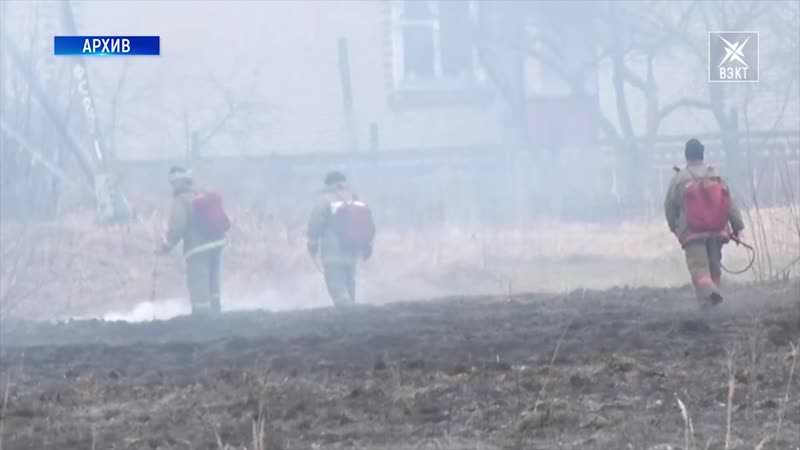 12 лесных пожаров случилось в Воскресенске по вине человека