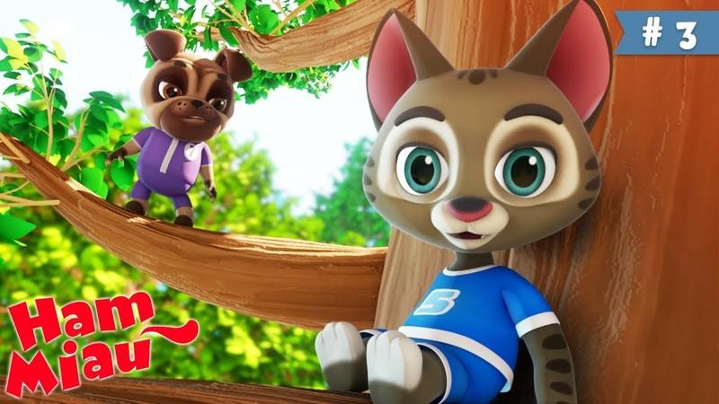 Ham Miau 🐶 Sus si jos 🐱 Desene animate pentru copii | HeyKids