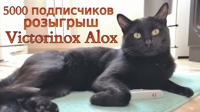 5000 подписчиков Розыгрыш ножа Victorinox Alox и немного о новинках Victorinox 2020