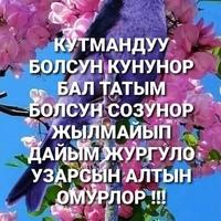 Дилзаьт Кичсид