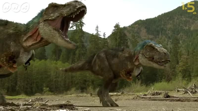 【恐竜CG】ティラノサウルスvs.トリケラトプス!壮絶な狩りの様子を再現【NHK恐竜超世界2019×1.5ch】Japanese dinosaurs CG