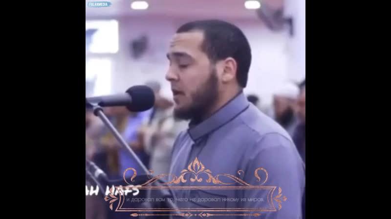 Сура 5 Аль Маида аяты 20 22 22 не полностью на данном видео Чтец Mustafa Abo Saif