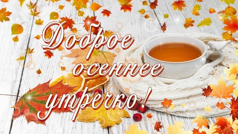 Доброе Осеннее Утречко Видео пожелание с добрым утром